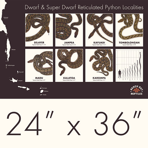Dwarf and Super Dwarf Reticulated Python Localities Poster