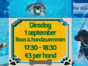 Baas & hond zwemmen