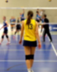 volleyball-1034420_1920.jpg