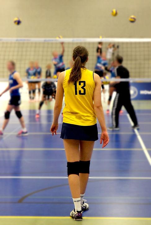 volleyball-1034420_1920.jpg