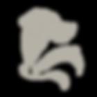 Dog Badger Graphic_Transparent.png