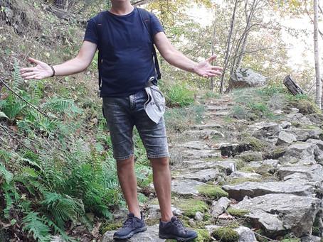 ARBRES DES FORETS de Jean - Charles, lauréat concours poésie Saint Cannat Novembre 2020