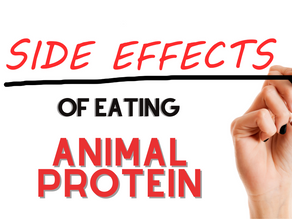 Side Effects of Animal Protein
