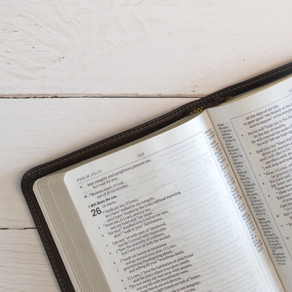 How to Read the Bible, According to the Bible
