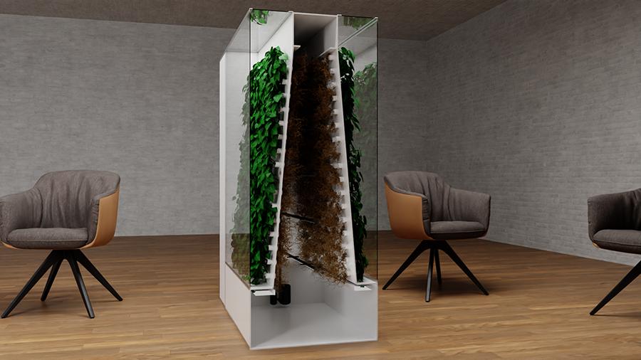 natural air purifier
