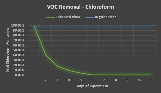 VOC removal from chloroform