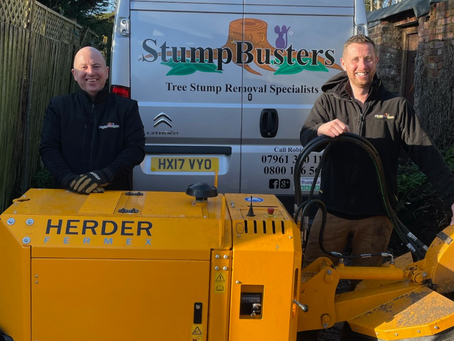 New Year, New Business for friends who buy Stumpbusters franchise together