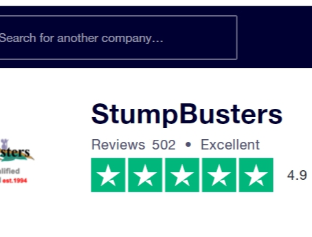 500+ reviews on Trustpilot!
