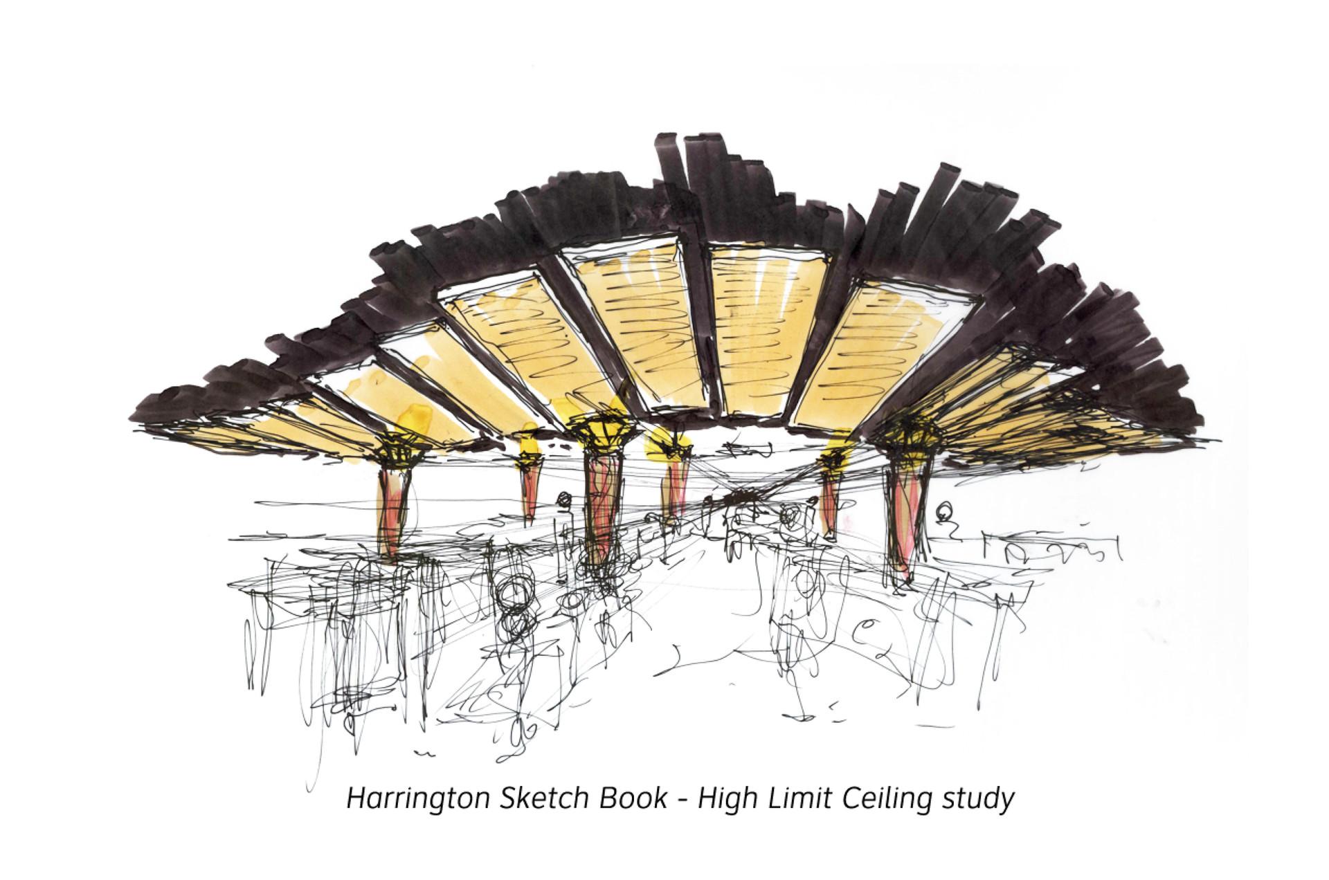 Ceiling Study