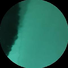 circle-cropped (97).png