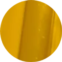 circle-cropped (49).png