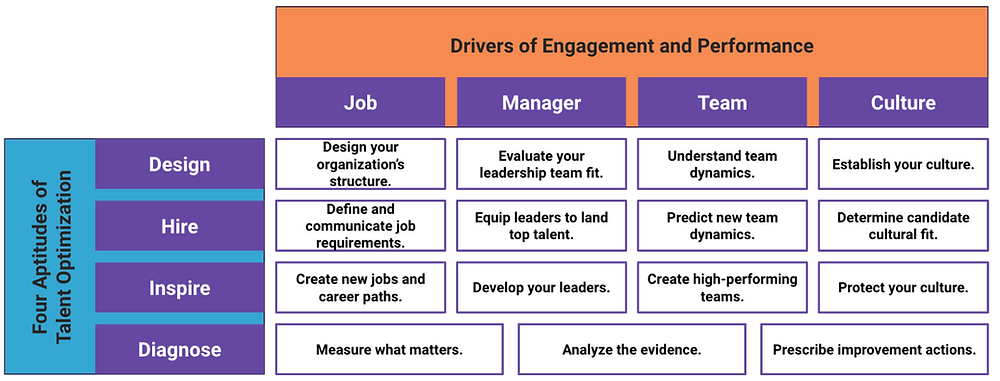 Drivers of Engagement
