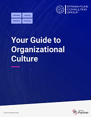 Guide to Organizational Culture.png