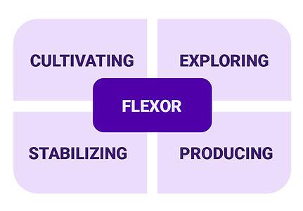 Flexor Team Styles