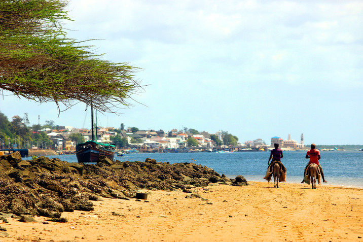 Day 346: Enter the Charming Island of Donkeys