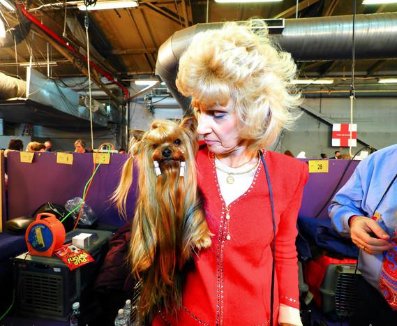 Westminster Dog Show, 2019