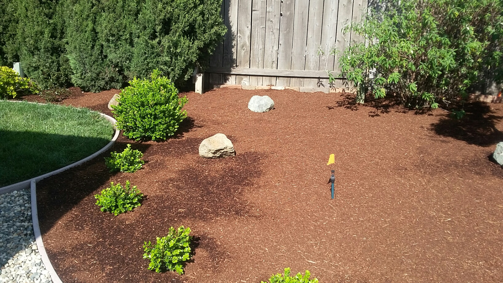 beginning of landscaping