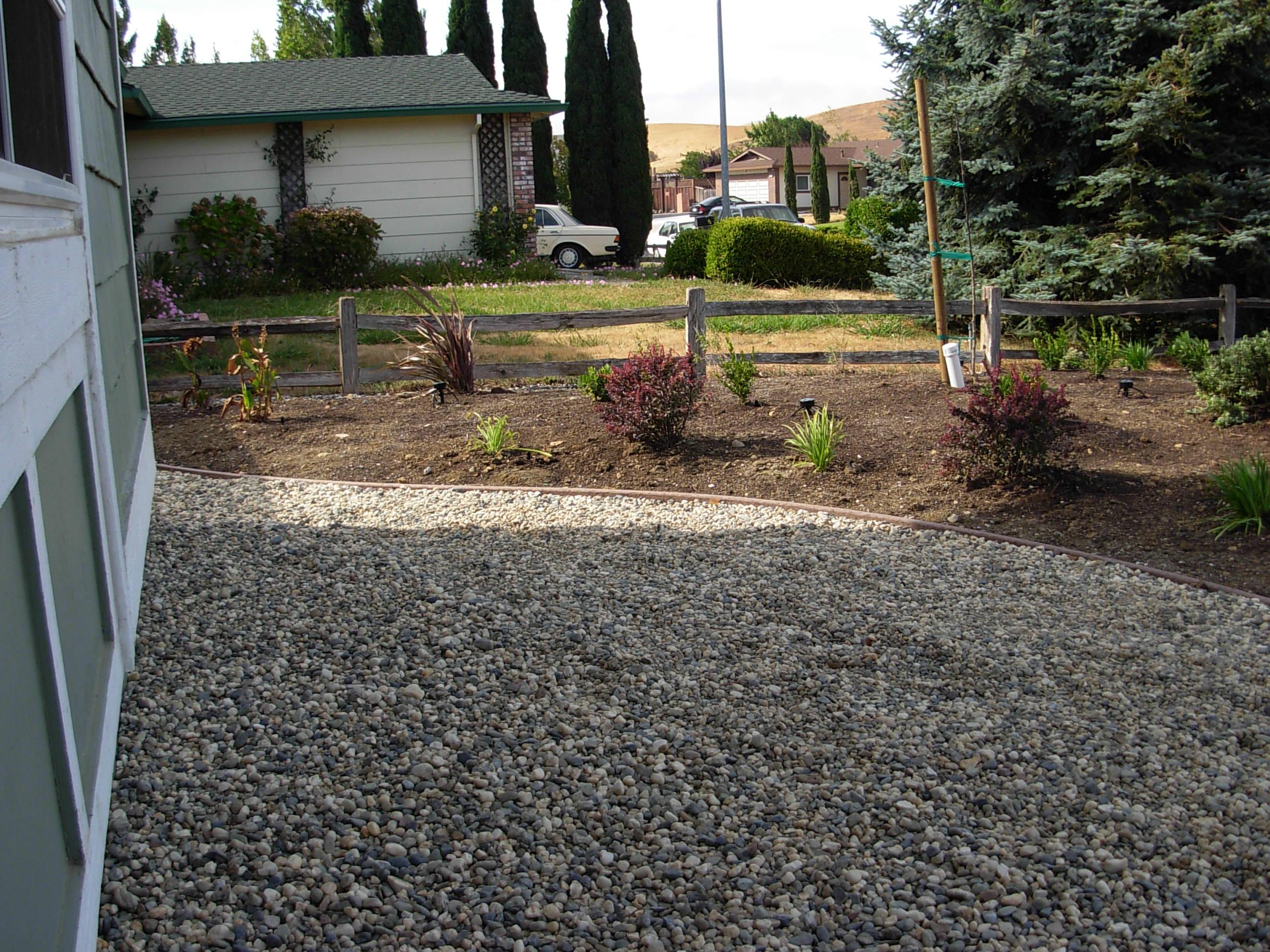 landscaping beginning
