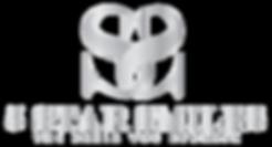 5 star logo silver 300dpi.png