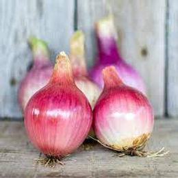 Blush Onions