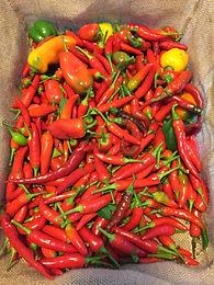 Super Hot Peppers