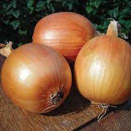 Patterson Onions