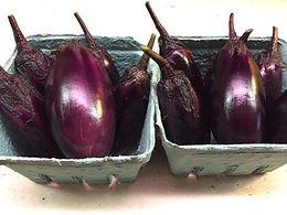 Baby Eggplant