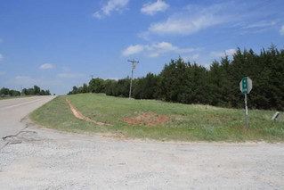 REAL ESTATE AUCTION: 44 AC in 4 tracts and combinations