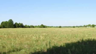 REAL ESTATE AUCTION: 76 Acres just off Route 66