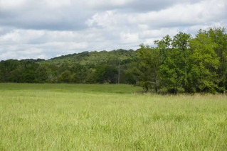 Real Estate Auction: 160AC Hidden Gem in Hughes County, OK