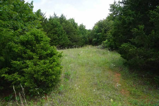 No Reserve Real Estate Auction: 15 AC Rural Country