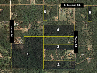 Online Only Land Auction
