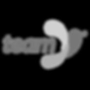 Team-foods-logo.png