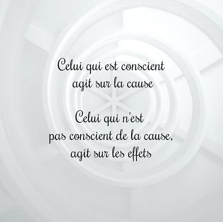 Celui qui est conscint agit sur la cause. Celui qui n'est pas conscient de la cause, agit sur les effets.