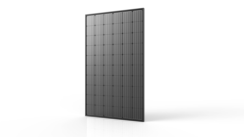 Silvered monocristallino_60 celle total black