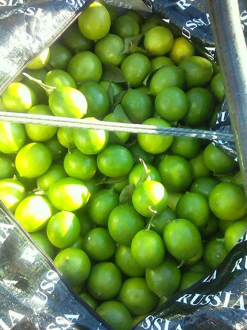 Лимон свежий, 1 кг