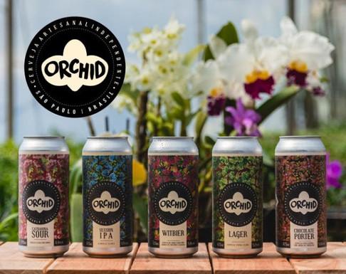 Orchid, nova marca de cervejas alia leveza e diversidade a preços acessíveis