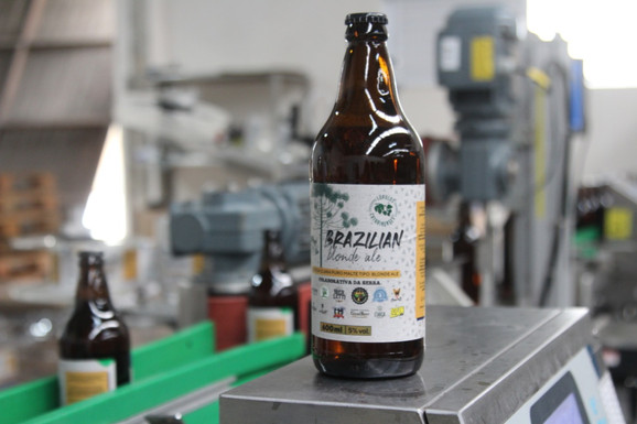 Ambev e microcervejarias catarinenses criam cerveja colaborativa com lúpulo nacional