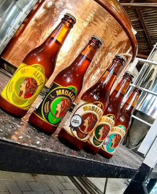 Cervejaria Madalena: Cervejas Premium: o porquê atrás da grande tendência