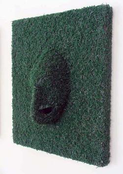 elastici n°5 - 2008