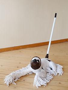 sloth_mop.JPG
