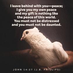 Peace Verses 14