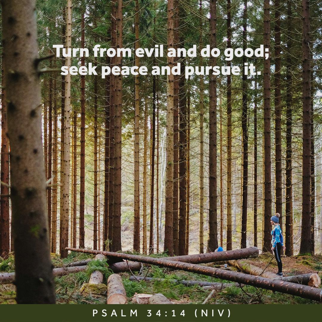Peace Verses 8