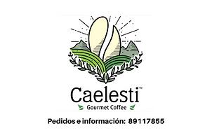 Caelesti