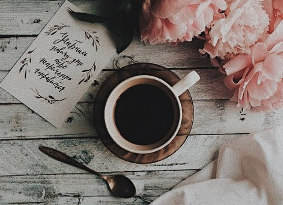 Кофе Бленд Swift №1 из арабики |  Кот и Город