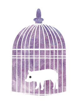 Pet Illustration