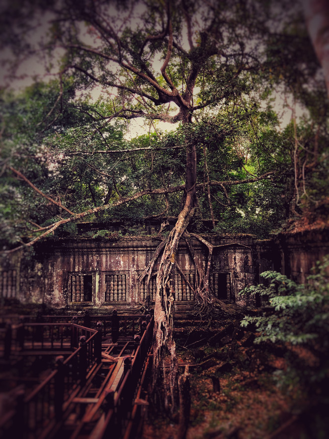 "Discovering of ""Beng Mealea""..."