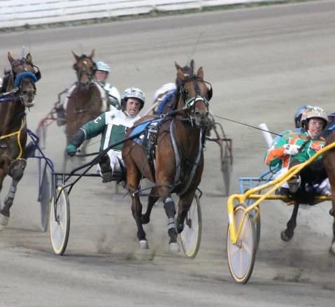 Harness racing in Charlottetown