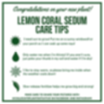 Plant Care Tips(2).png