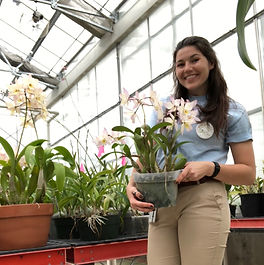 chloee collins orchid intern smithsonian gardens uf studentpenn state botany